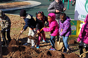 PHOTO Arbor Day Tree Planting