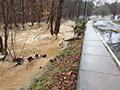 bolin_creek_at_capacity-thumbnail