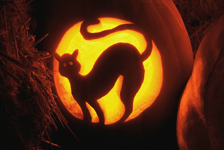 Halloween_home_page_image