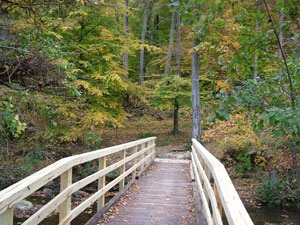 PHOTO: Bridge on trail