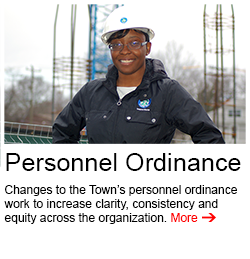 personnel_ordinance-250x259