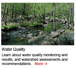 water-quality