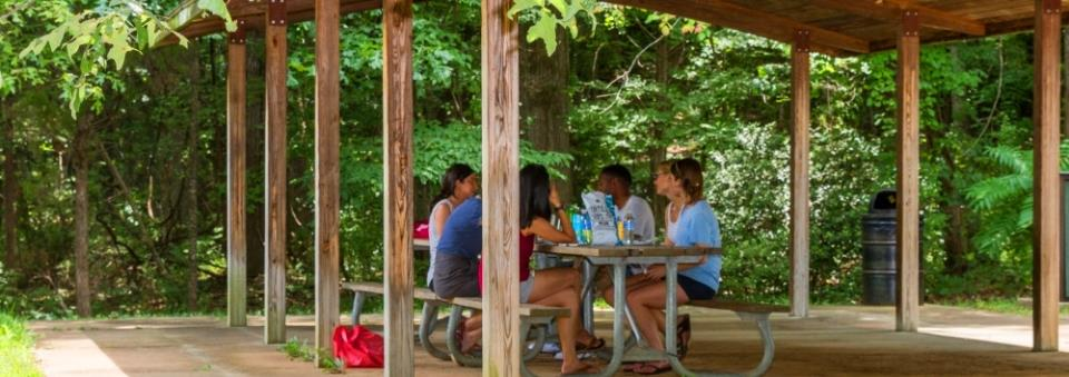 MM Picnic Shelter