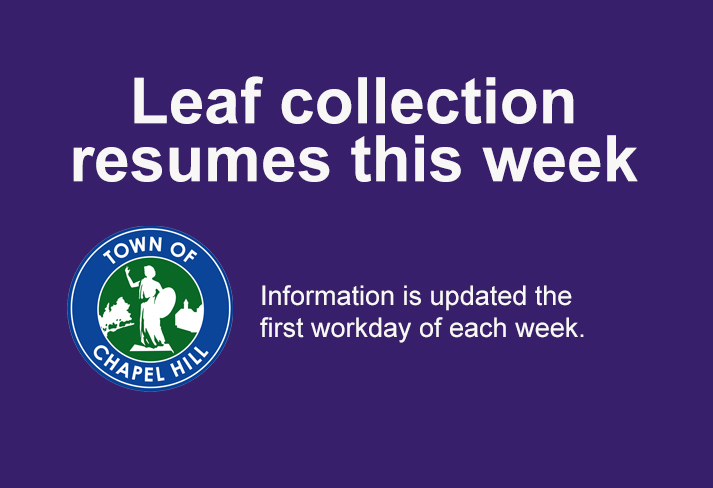 Leaf_collection_resumes