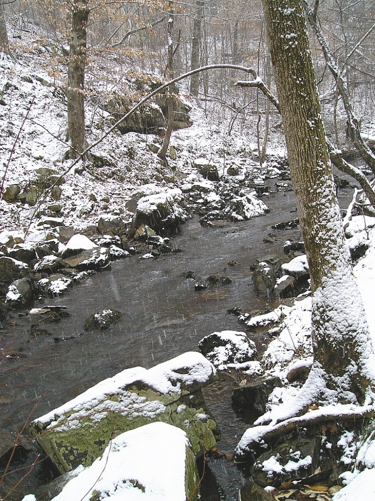 Bolin Creek in Winter by Dave Otto